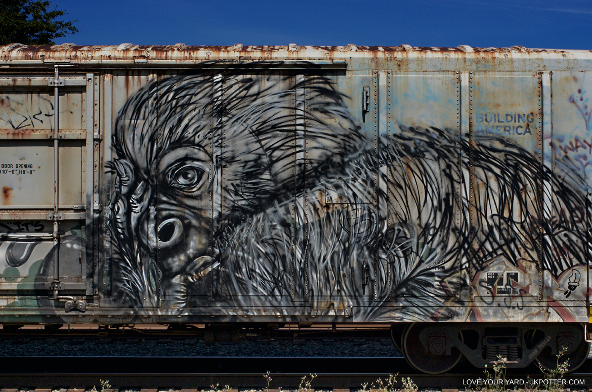 gorilla, tags, graffiti, boxcar, train, boxcar tags, railroad graffiti, freight train graffiti, rail art, rail graffiti, boxcar, freight, moniker